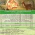 «Славянская весна» - праздник жаворонков или открытие Сварги